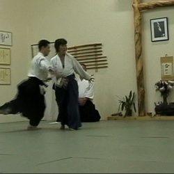 ushiro technique