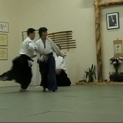 ushiro technique